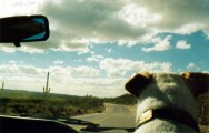 Driving Luke